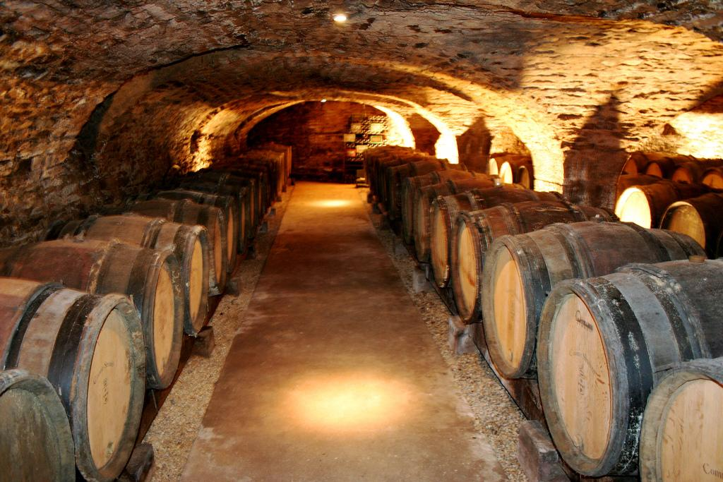 7 Most Popular Croatian Wine Types